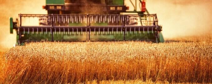 Landwirtschaft Ernte