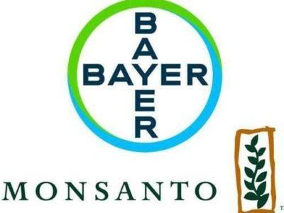 Bayer Monsanto logo