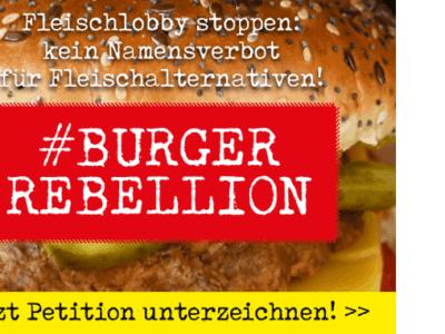 Burgerrebellion