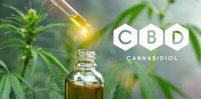 cbd öl cannabis cannabinoid cannabinol
