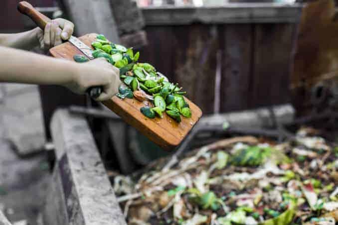 Essen Verschwendung Freeganismus Abfall Lebensmittel