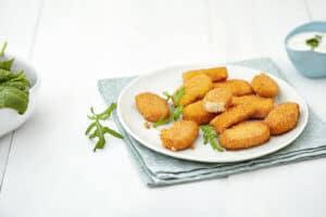 Hydrosol_Vegetarische Nuggets