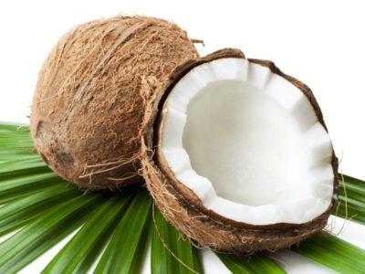 Kokosnüsse (Basis für den veganen Kokos-Käse von Koko Dairy Free)
