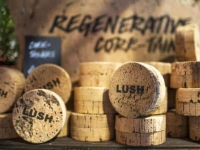 Lush CorkPot_05