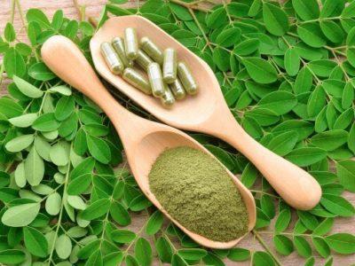 Moringa, Nahrungsergänzung, Pulber, Blätter, Samen, Öl