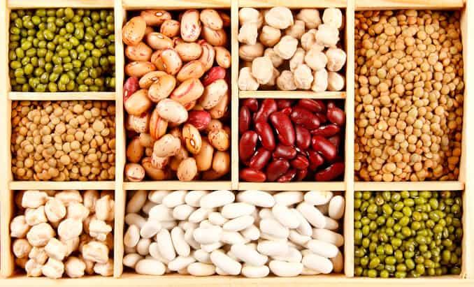 Pflanzliche Proteine, Hülsenfrüchte