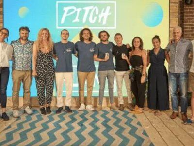 Pitch-Plant-678x381