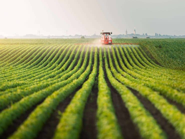 Tractor spraying pesticides at soy bean field agriculture