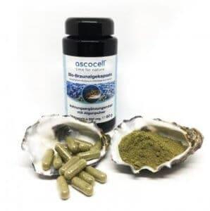 ascocell algen kapseln