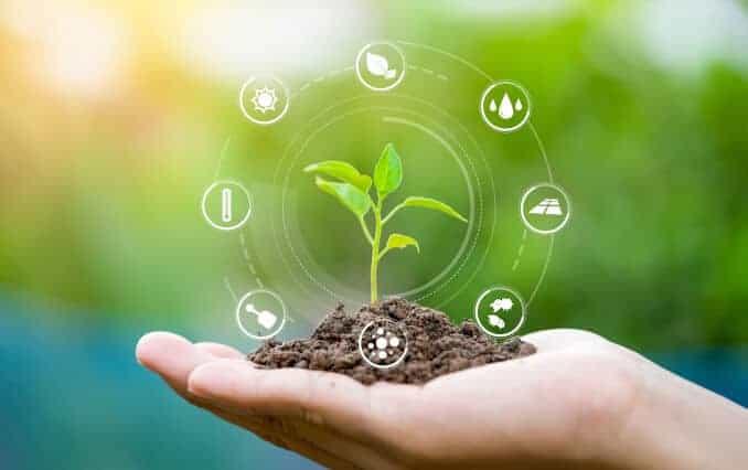 nachhaltige Landwirtschaft, Hand hält Setzling