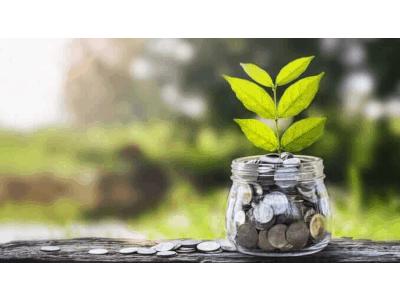vegconomist - das vegane Wirtschaftsmagazin - cover