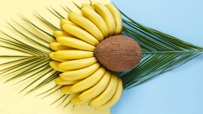 Vegane Lederalternative aus Kokosnuss & Bananen
