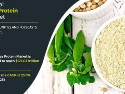 Marktbericht globaler Erbsenprotein-Markt