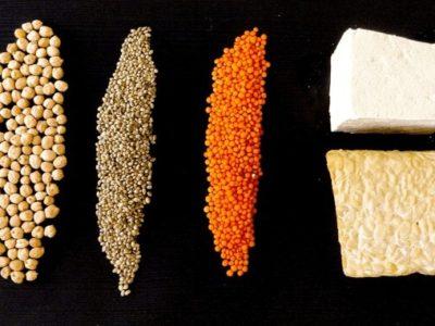 pflanzliche Proteine vegan, Kichererbsen, Tofu, Tempeh, Linsen