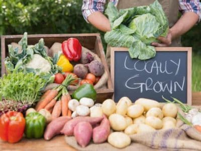 regional frisch obst gemüse bio anbau