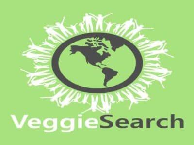 veggiesearch-logo-quadrat